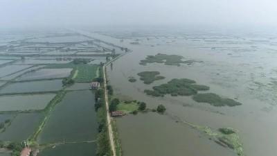 1/6的中国都被泡在了水里,拿什么来拯救你,我的国